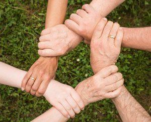 עמותת מקימי - כלכלה נבונה - סיוע בתחומים שונים