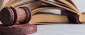 עמותת מקימי - כלכלה נבונה הזכויות שלי